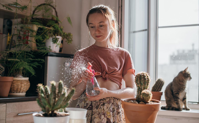 Ung kvinna i sin bostad planterar om en kaktus
